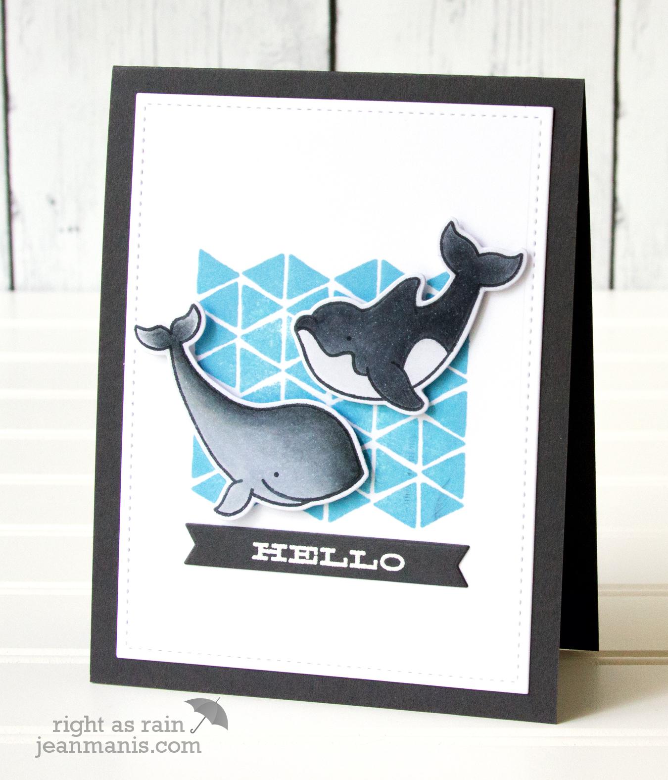 Whale Hello